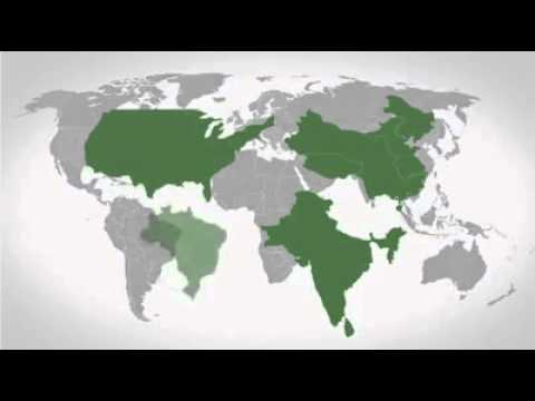 The Ugly Truth, Global WealthInequality