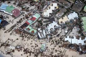 Irma d image 1